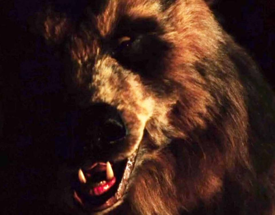 Grizzly II: The Revenge (1983)